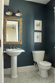 decoration paint color for small bathroom with no natural light