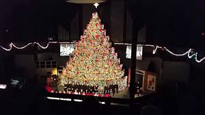 the first baptist church living christmas tree youtube