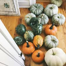 pumpkins meeting sadie u0026 letting your light shine u2014 our vintage