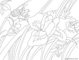 coloring pages u2013 natural artist