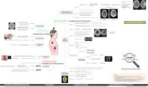 Dia Map Stroke Imaging And Diagnostic Tests Mind Map Brain Tests Heart