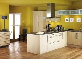 delighted popular kitchen wall colors 2014 images wall design