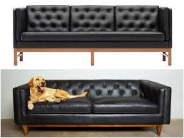 splurge or save 10 living room essentials for your new home