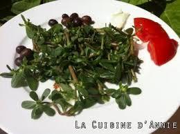 cuisine sauvage recettes recette salade de pourpier la cuisine familiale un plat une recette