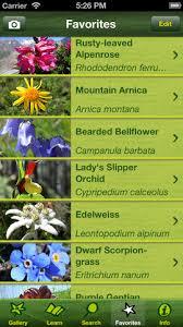 Identify Flowers - alpineflower finder identify the wild flowers of the alps 1 0 0