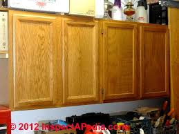 best plywood for kitchen cabinets kitchen cabinet choices design guide best practices
