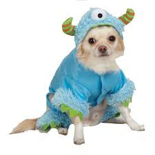 Funny Dog Halloween Costumes 14 Pet Halloween Costumes Images Animal