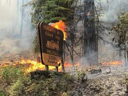 Wildfires California August 2017 by California Farm Bureau Federation Commentary Disastrous Wildfires