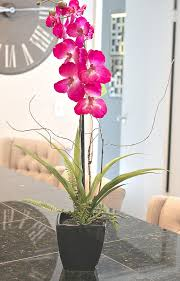 faux orchids trick re potting silk orchids to look real