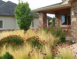Xeriscape Landscaping Ideas Xeriscape Landscaping Pictures Gallery Landscaping Network