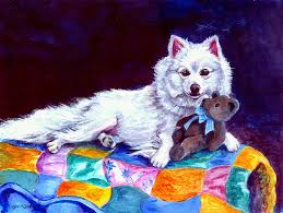 american eskimo dog michigan american eskimo dog paintings fine art america