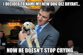 Dez Bryant Memes - decided to name my new dog dez bryant