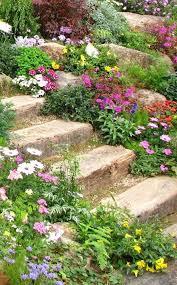 idee de jardin moderne 1001 idées et conseils pour aménager une rocaille fleurie charmante