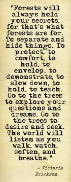 the 25 best tree quotes ideas on quotes on fear