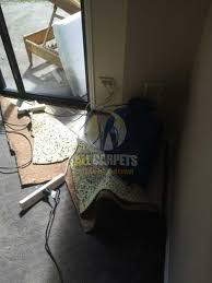 Sofa Cleaning Adelaide Adelaide Water Damage Repair Stains Mold Odours U0026 Bubbles