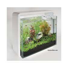 aquarium design 50l design and ideas