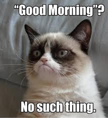 Morning People Meme - i am sooo not a morning person so true pinterest grumpy cat