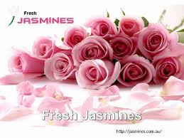 buy indian flower online at fresh jasmines create discover and