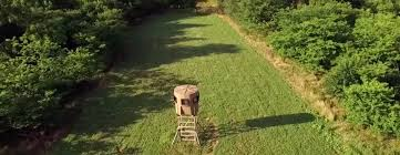 Natural Hunting Blinds Tips For Setting Up A Hunting Blind In A Food Plot Banks Outdoors
