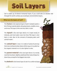 layers of soil worksheet education com