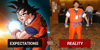 Goku Halloween Costumes Halloween Costumes Expectation Reality Costume Wall
