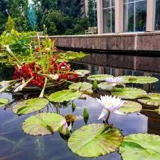 Atlanta Botanical Garden Atlanta Ga Atlanta Botanical Garden 2241 Photos 436 Reviews Botanical