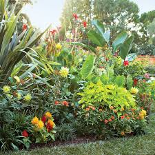 border flowers for spring sunset