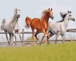 online buy wholesale horse wall decoration from china horse wall