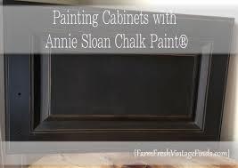 Annie Sloan Paint Kitchen Cabinets 102 Best Artisan Cabinets Images On Pinterest Kitchen Annie