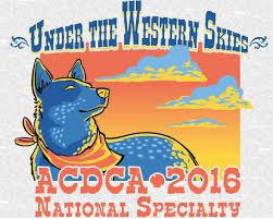 belgian sheepdog club of america national specialty australian cattle dog club of america inc u2013 let it b k9 u0027s