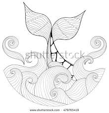 whale tail stock images royalty free images u0026 vectors shutterstock