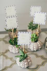 115 best growing gift favors images on pinterest succulent