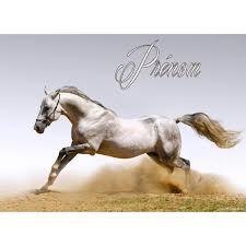 sous cheval bureau set de table cheval