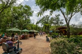 pandora world of avatar rope drop touring strategy easywdw