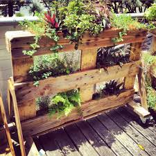pallet garden ideas fresh in new rolling planter with a frame legs