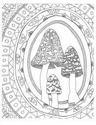 86 mushrooms toadstools coloring pages adults images