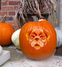 The Best Pumpkin Decorating Ideas 53 Creative Pumpkin Carving Ideas You Should Try This Fall Puppy