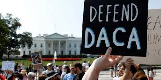 trump administration resumes accepting daca renewals under court