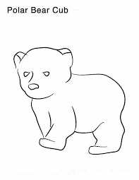 polar bear polar bear coloring polar bear