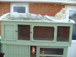 large rabbit hutch custom made sherborne dorset pets4homes