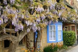 cotswolds cottage cotswolds property guide where to buy a country house or cottage