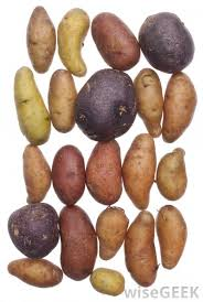 Winter Root Vegetables List - what are the different types of root vegetables