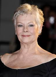 how to get judi dench hairstyle hairstyles judi dench short spiky hairstyle sophisticated