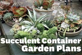 homeofficedecoration succulent garden design plans