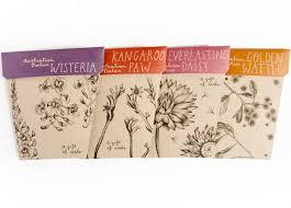 australian native plant seeds australian native gift of seeds box set set of 4 cards u0026 envelopes