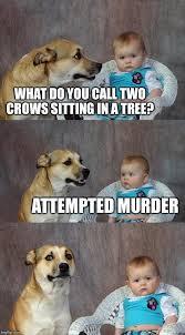 Attempted Murder Meme - dad joke dog meme imgflip