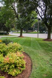 logical landscaping