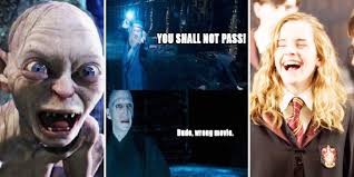 Hary Potter Memes - 15 lord of the ring vs harry potter memes that prove the rivalry