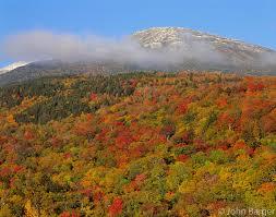 nhwm 03 mt washington above autumn colored hardwood forest and