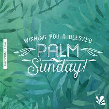 palm sunday palms for sale blessed palm sunday ecards dayspring